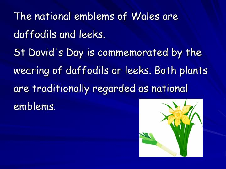 The national emblems of Wales are daffodils and leeks.
