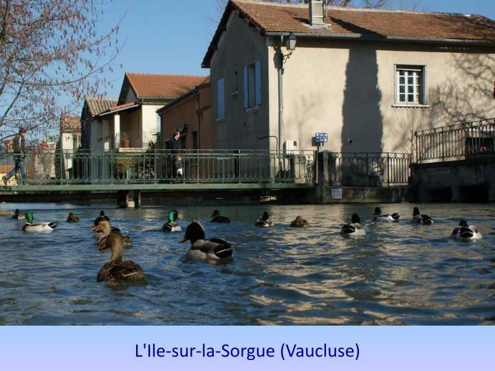 L'Ile-sur-la-Sorgue (Vaucluse)