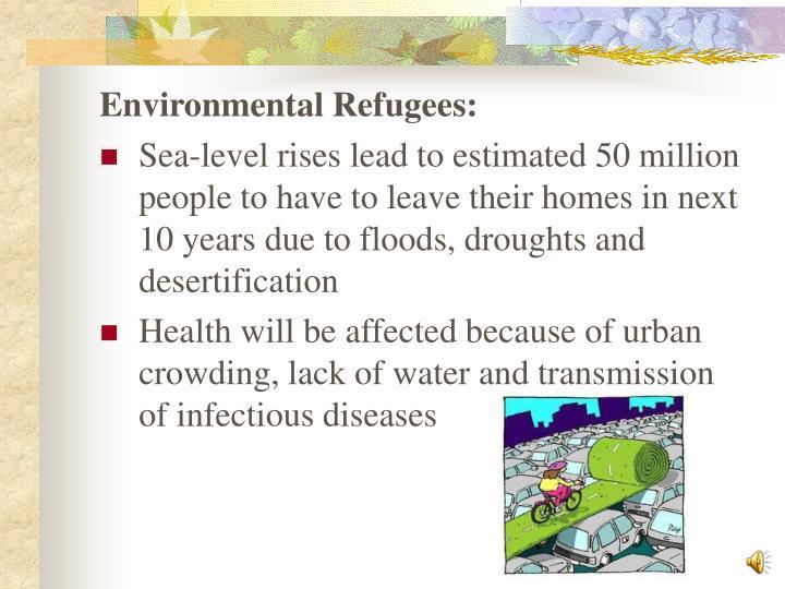 Environmental Refugees: