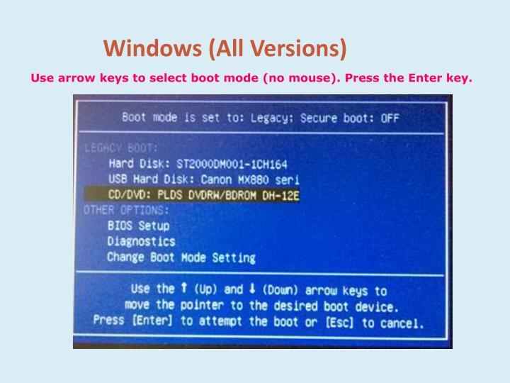 Windows (All Versions)