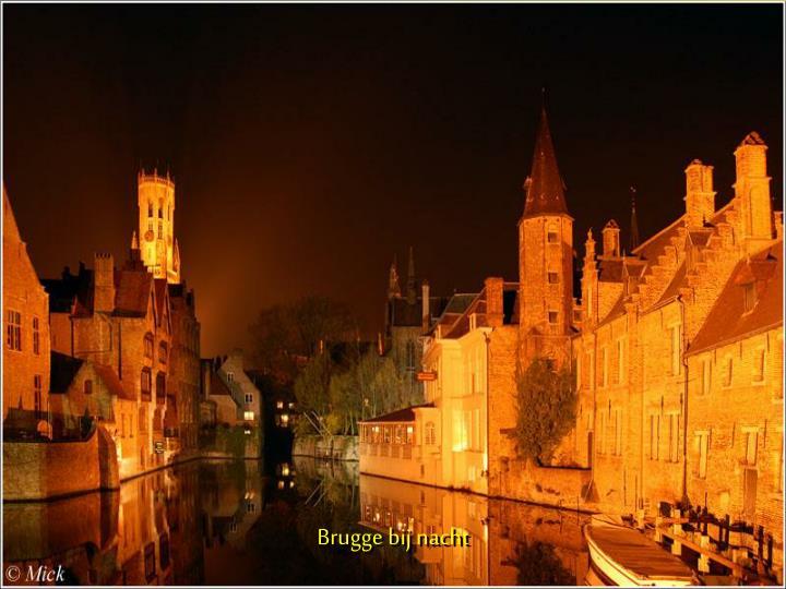 Brugge bij nacht