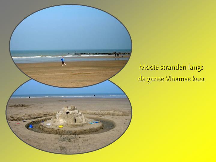 Mooie stranden langs de ganse Vlaamse kust