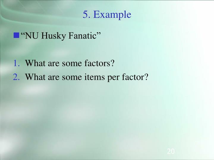 """""""NU Husky Fanatic"""""""