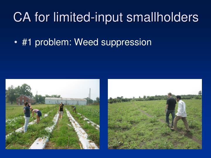CA for limited-input smallholders