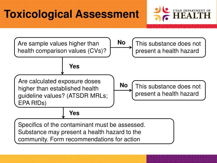 Toxicological Assessment