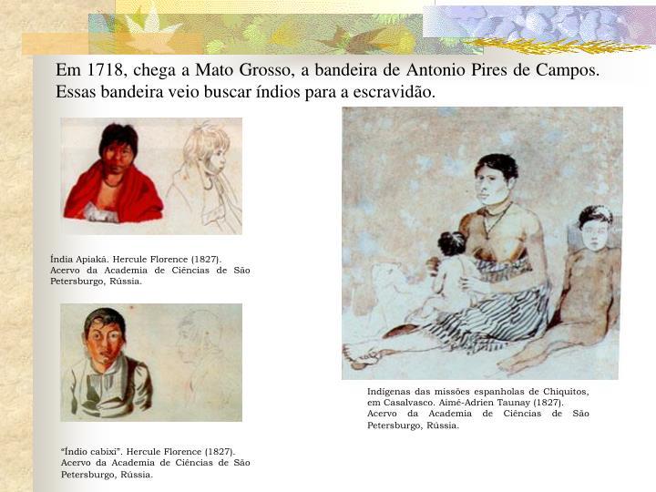 Em 1718, chega a Mato Grosso, a bandeira de Antonio Pires de Campos. Essas bandeira veio buscar índios para a escravidão.