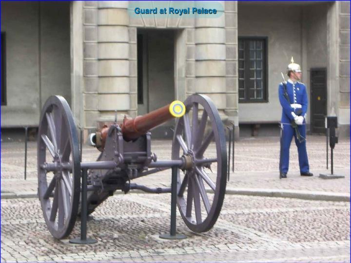 Guard at Royal Palace