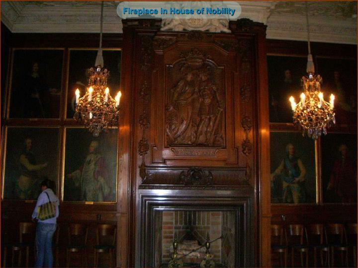 Fireplace in House of Nobility