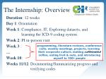 the internship overview