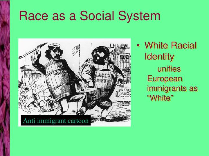 Race as a Social System