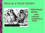 race as a social system1
