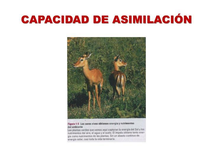 CAPACIDAD DE ASIMILACIÓN