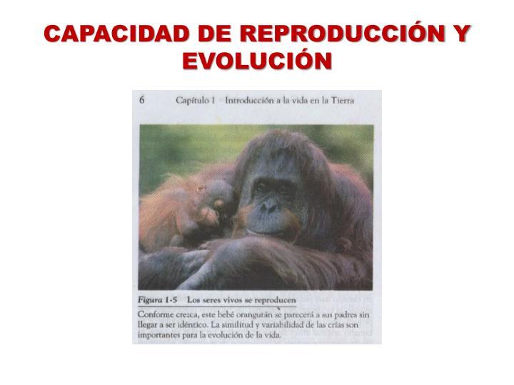 CAPACIDAD DE REPRODUCCIÓN Y EVOLUCIÓN