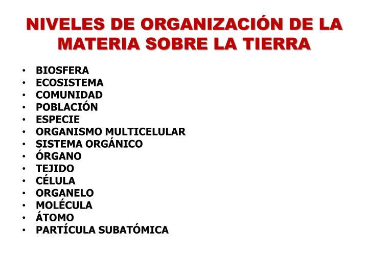 NIVELES DE ORGANIZACIÓN DE LA MATERIA SOBRE LA TIERRA
