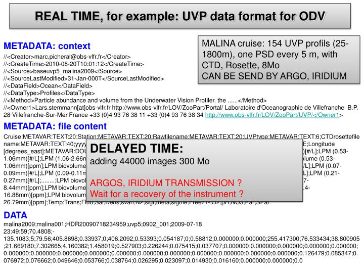 REAL TIME, for example: UVP data format for ODV