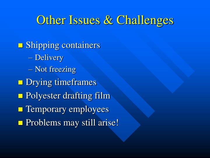 Other Issues & Challenges