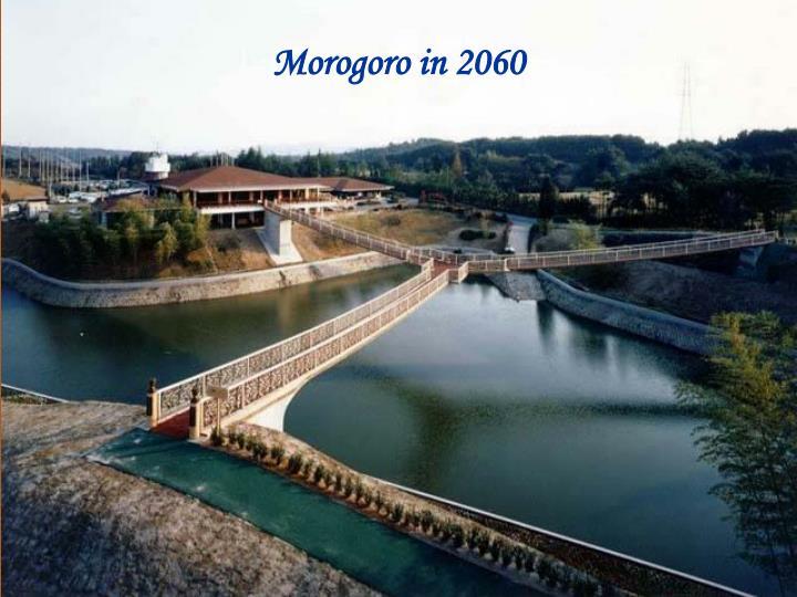 Morogoro in 2060