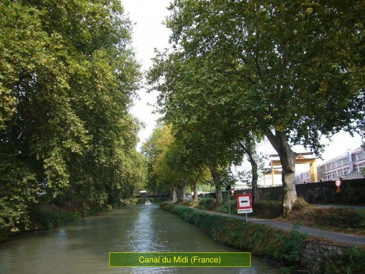 Canal du Midi (France)
