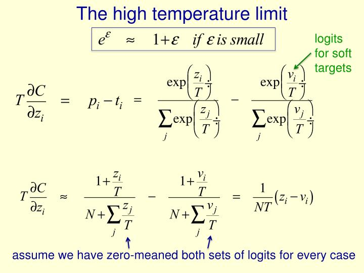 The high temperature limit