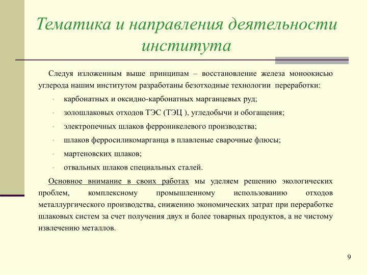 Тематика и направления деятельности института