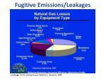 fugitive emissions leakages
