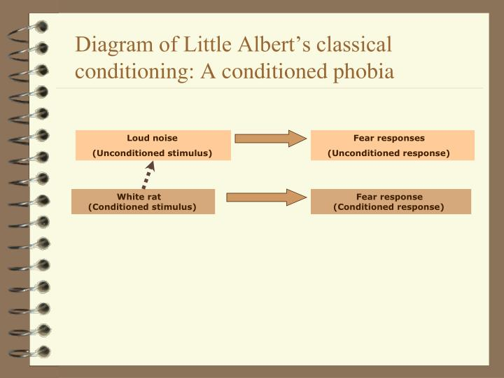 Diagram of Little Albert's classical