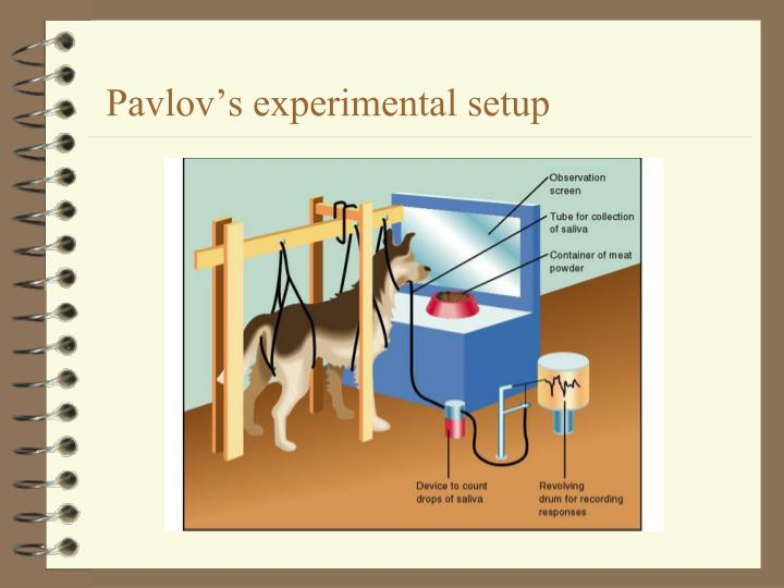Pavlov's experimental setup
