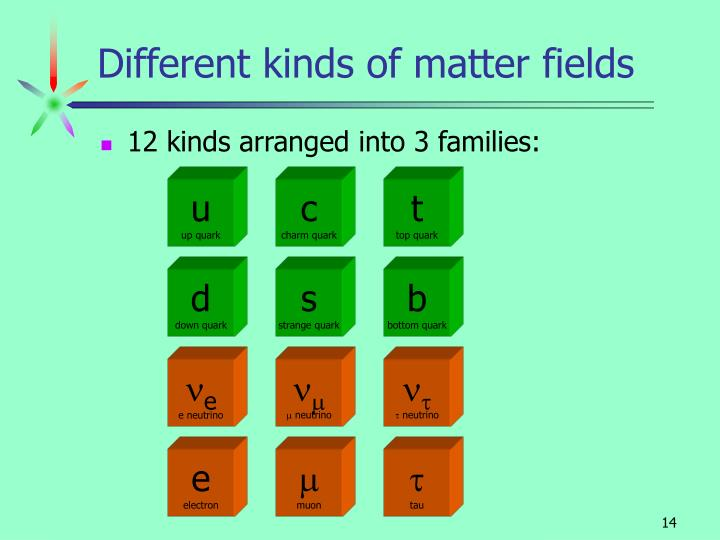 Different kinds of matter fields