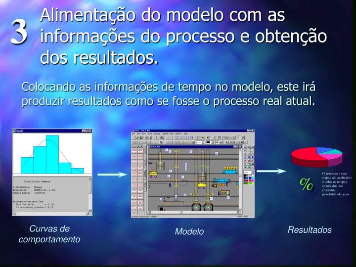 Alimentação do modelo com as informações do processo e obtenção dos resultados.