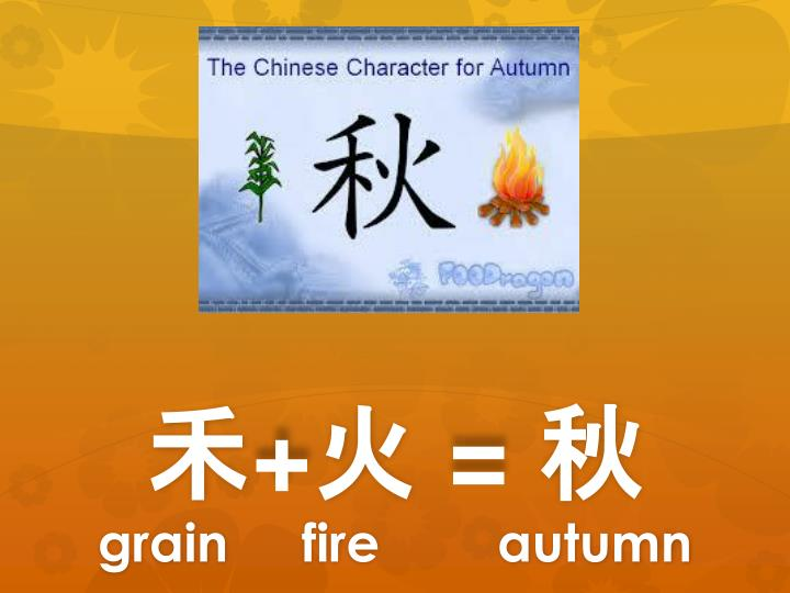 Grain fire autumn