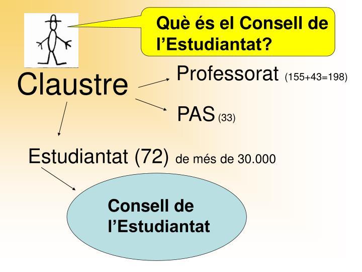 Què és el Consell de l'Estudiantat?