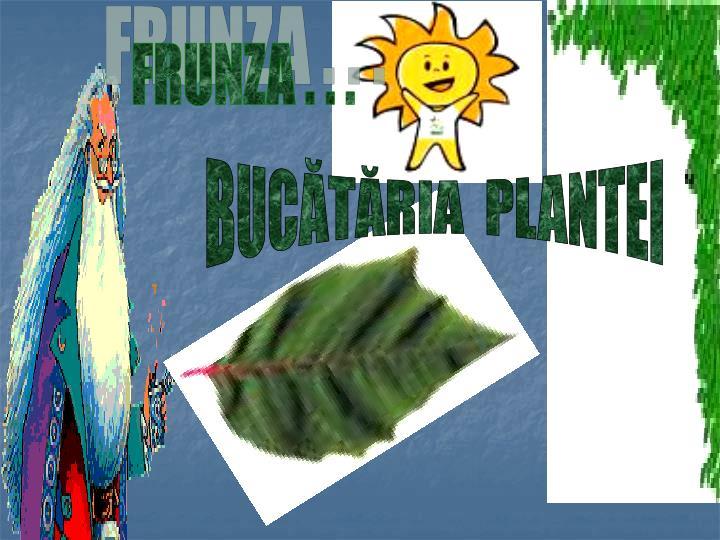 FRUNZA . . .