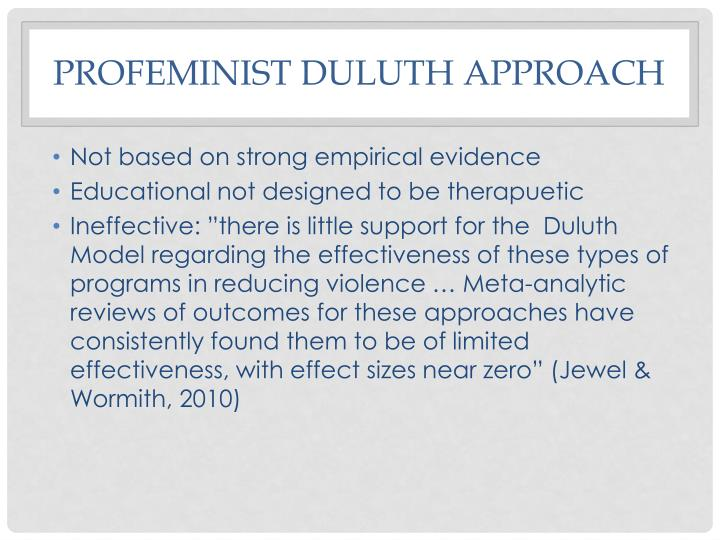 Profeminist Duluth Approach