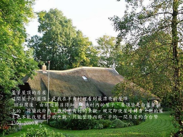 蘆葦屋頂的房屋