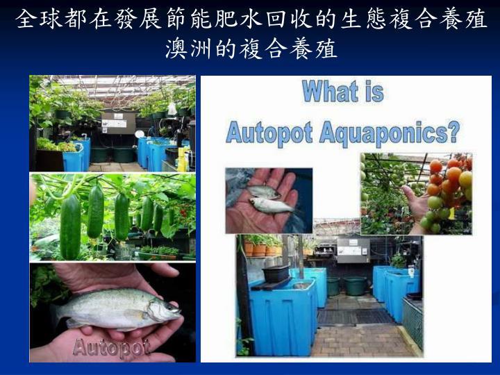 全球都在發展節能肥水回收的生態複合養殖