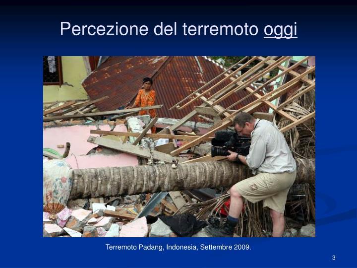 Percezione del terremoto