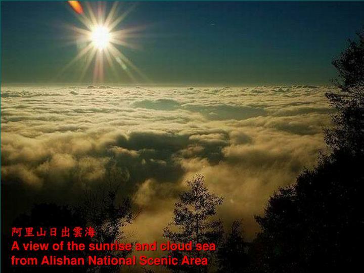 阿里山日出雲海