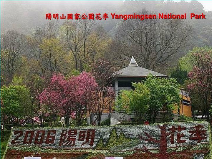 陽明山國家公園花季