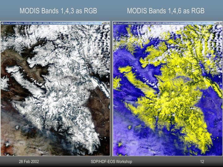 MODIS Bands 1,4,3 as RGB