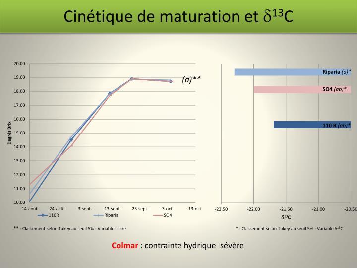 Cinétique de maturation et
