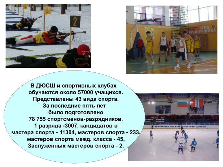 В ДЮСШ и спортивных клубах