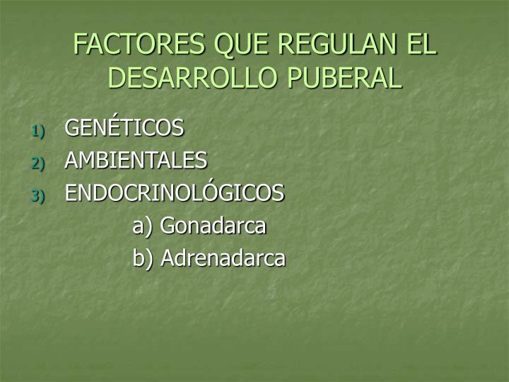 FACTORES QUE REGULAN EL DESARROLLO PUBERAL