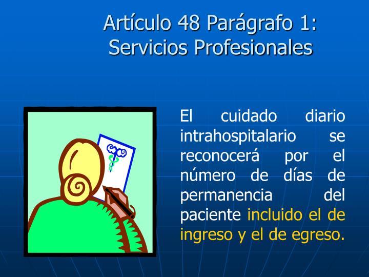 Artículo 48 Parágrafo 1: Servicios Profesionales