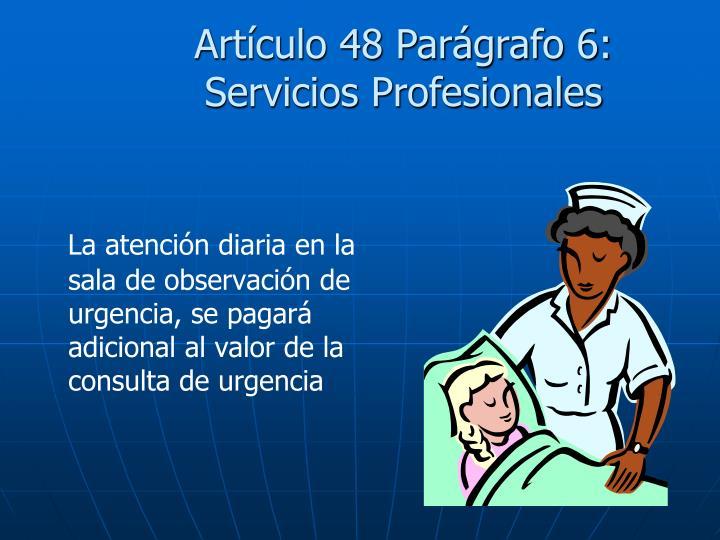 Artículo 48 Parágrafo 6: Servicios Profesionales