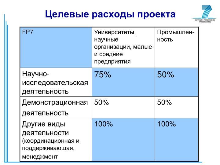 Целевые расходы проекта