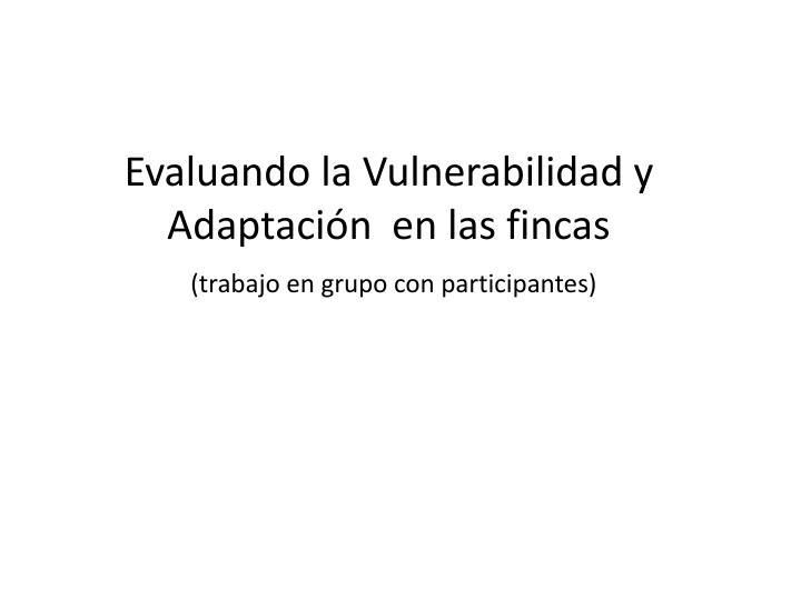 Evaluando la Vulnerabilidad y Adaptación  en las fincas