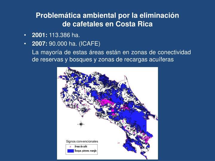 Problemática ambiental por la eliminación