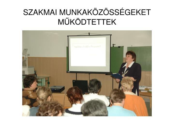 SZAKMAI MUNKAKÖZÖSSÉGEKET
