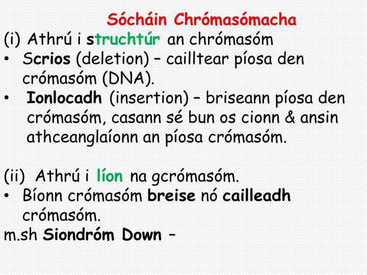 Sócháin