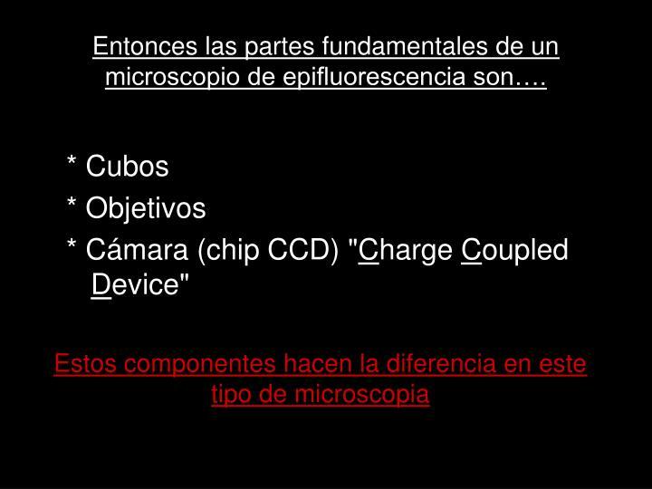 Entonces las partes fundamentales de un microscopio de epifluorescencia son….